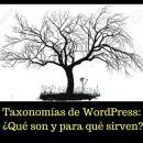 Taxonomías de WordPress: